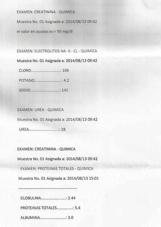 LifEscozul® - Vicente 7 - Cáncer Gástrico Intestinal